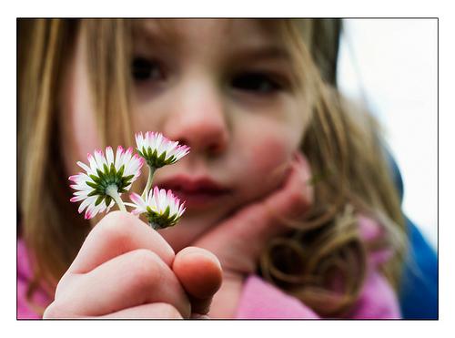 jessemillan-flickr
