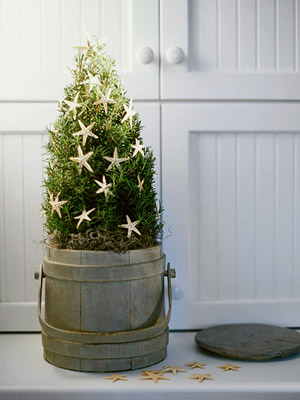 Creative Christmas Trees & Stands