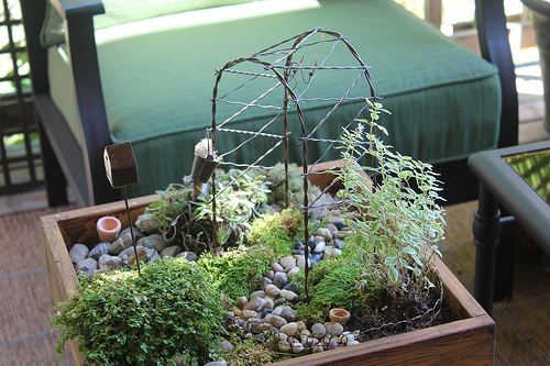 Miniature Table Top Garden With Stepables The