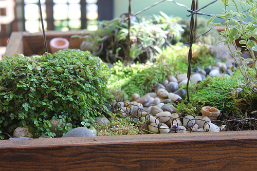 miniature table top garden with stepables my fairy garden