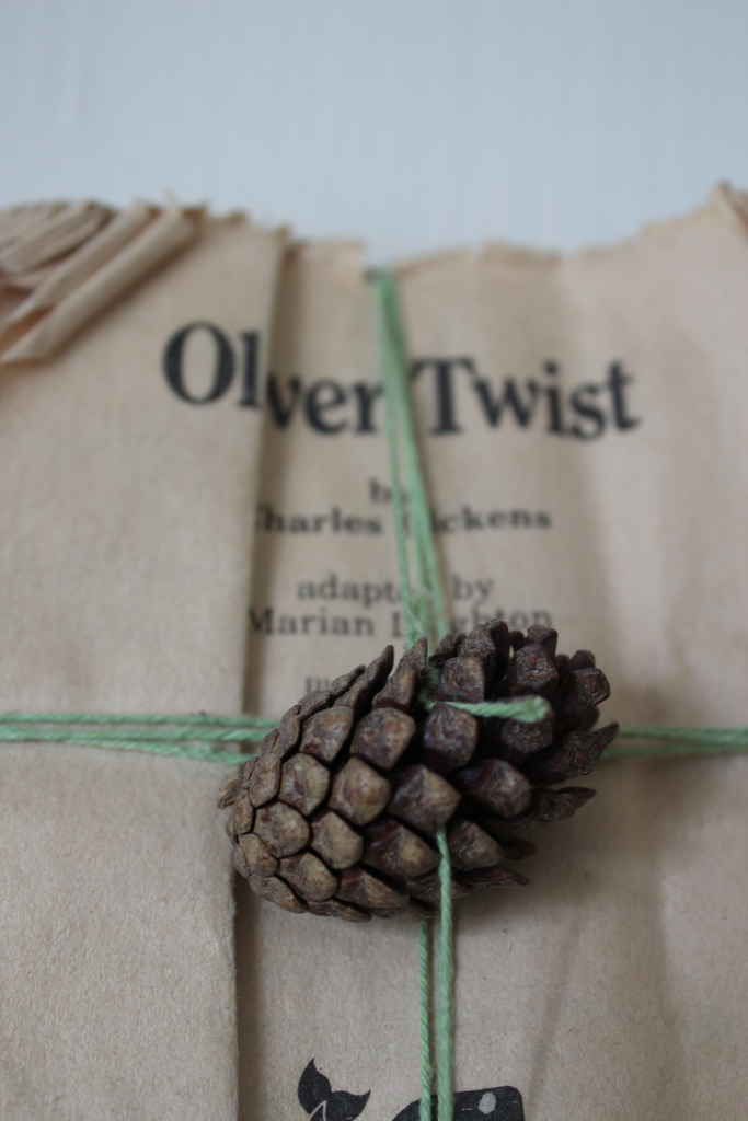 gift wrapping idea twine pinecone
