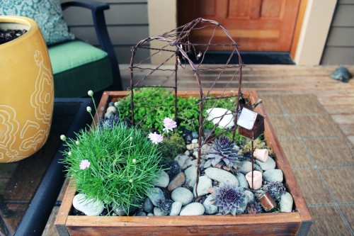 Small Container Fairy Garden in a Wood Crate