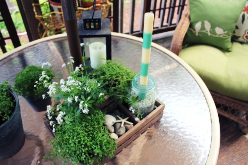 tabletop garden centerpiece in a crate