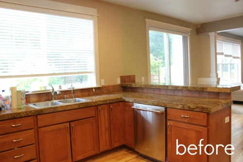 Before And After Kitchen Remodel Photos Remove Family Room Wall