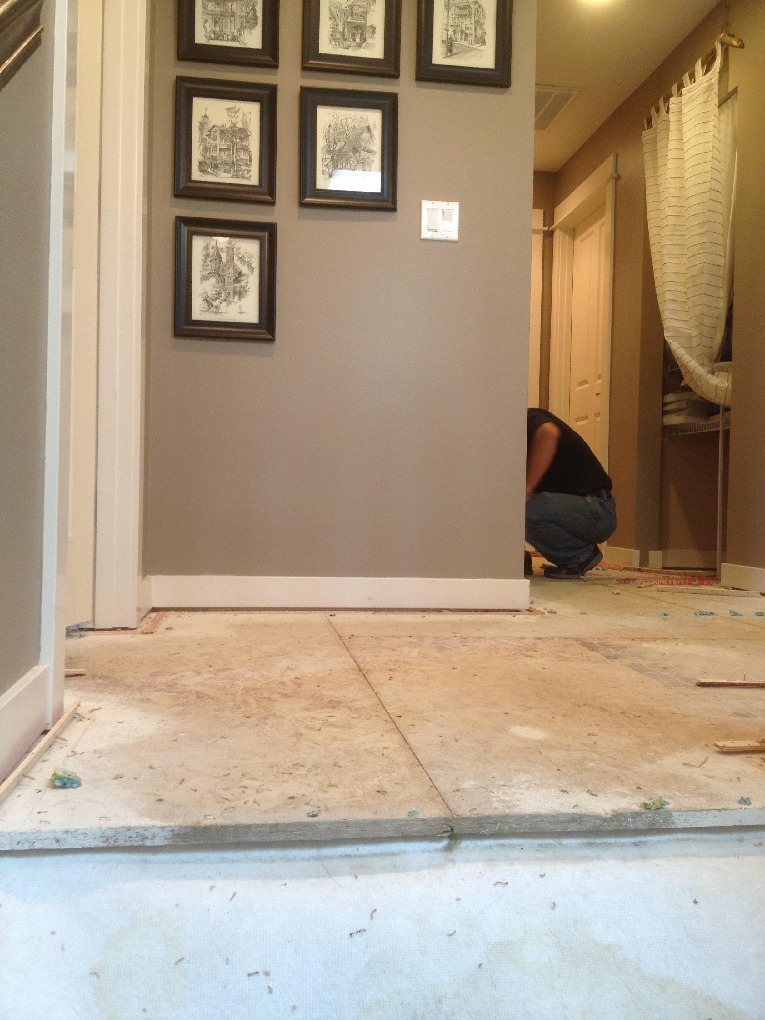 Wood Floors Or Carpet Upsrs - Carpet Vidalondon