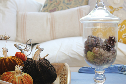 fall-decorating-velvet-pumpkins