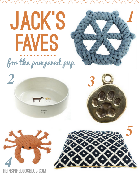 Jack's Faves {For the Pampered Pup}
