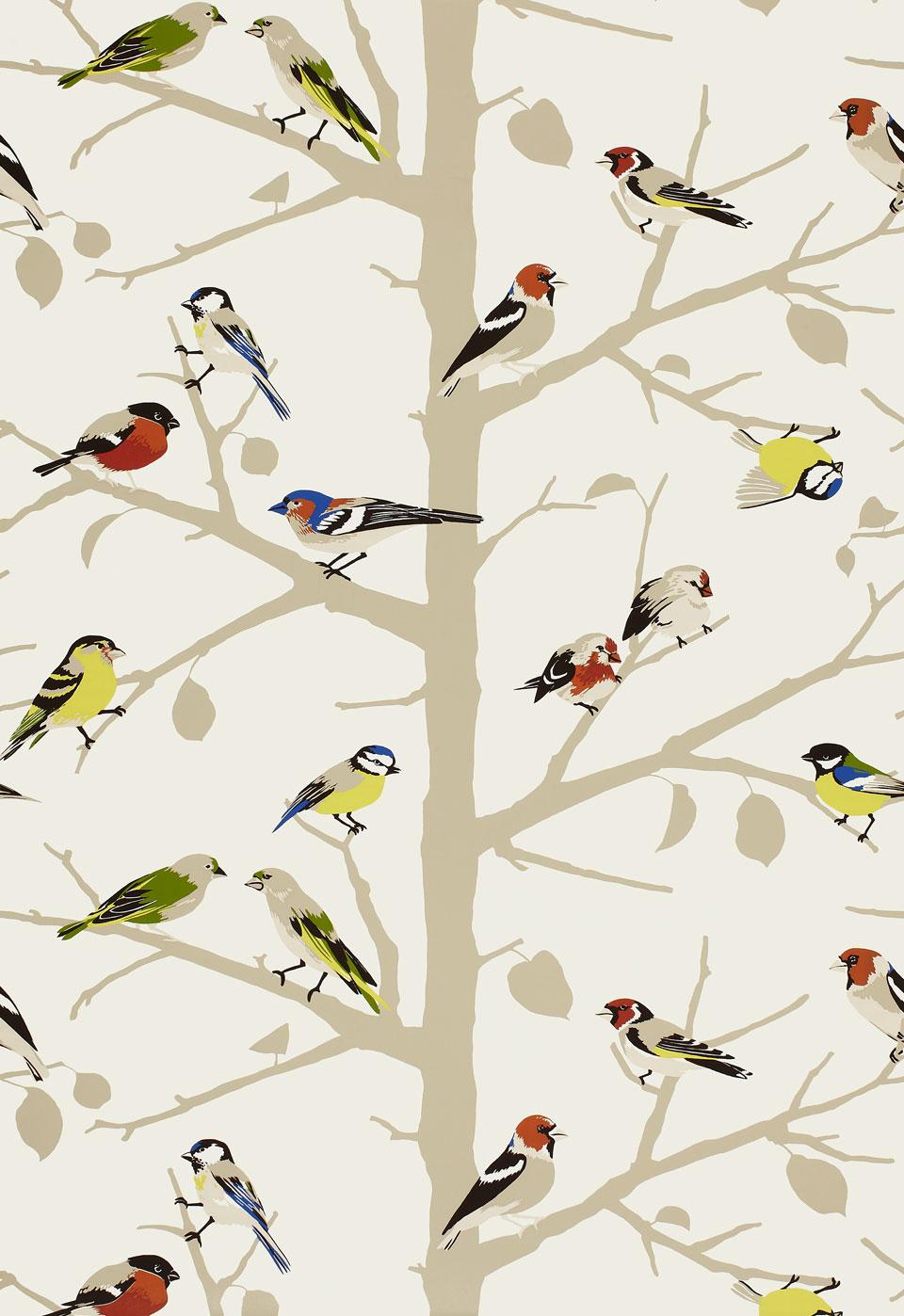 Bird House Wallpaper Border Free Hd Wallpapers