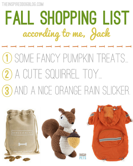 Jack The Goldendoodle's New Blog {& his fall shopping list!}