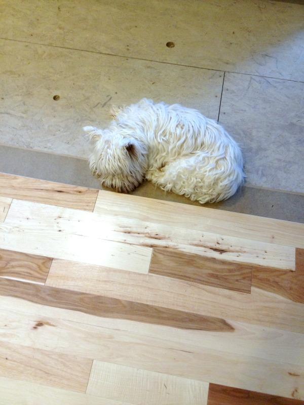 {Update} Hardwood Floor Installation!