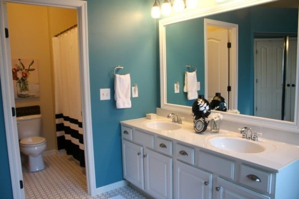Master Bathroom Makeover Ideas {Hooked on Houses}