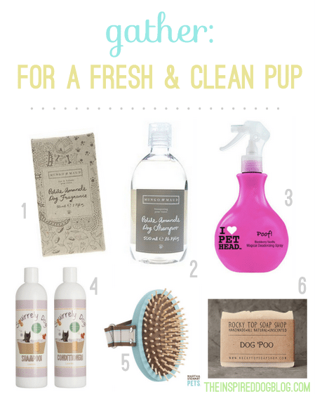 Cleaning-and-Grooming-Products-for-Dogs