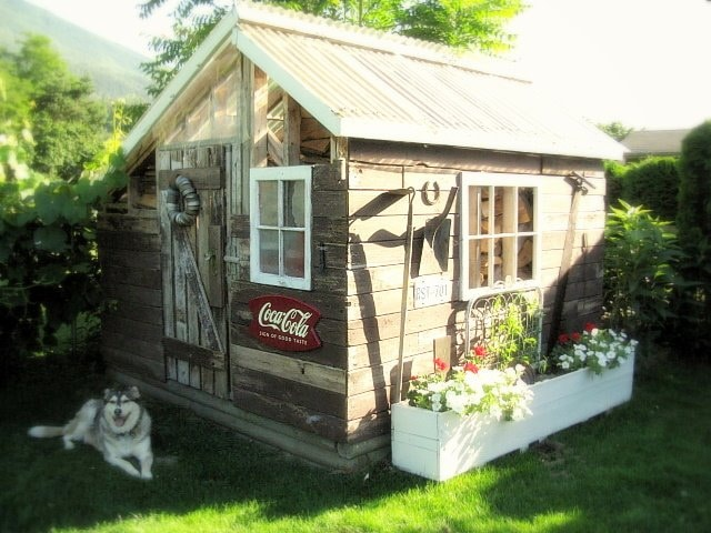 donna from funky junk interiors has an adorable backyard shed