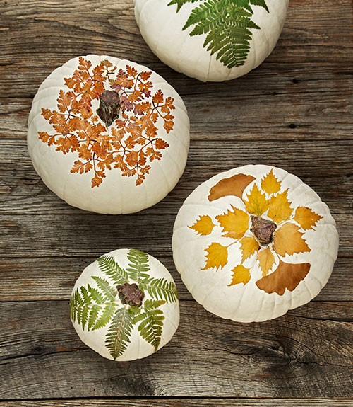 Slow Fall {& Decoupage Pumpkins with Foliage}