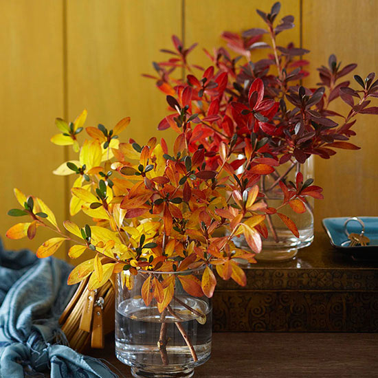 Color Blocking Fall Branches {Easy Fall Decorating Idea}