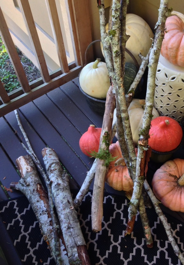 Natural Decor: Decorating with Branches