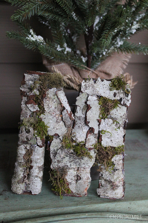DIY birch bark monogram