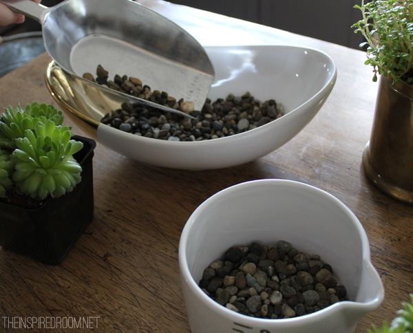 Pea Gravel for Succulent Planting