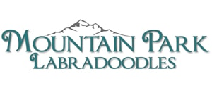 Mountain Park Labradoodles Ad
