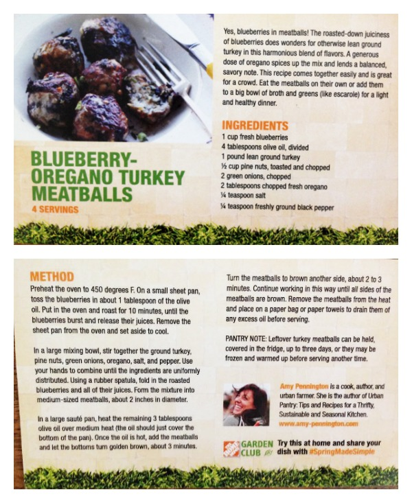 Blueberry Oregano Turkey Meatballs by Amy Pennington.jpg
