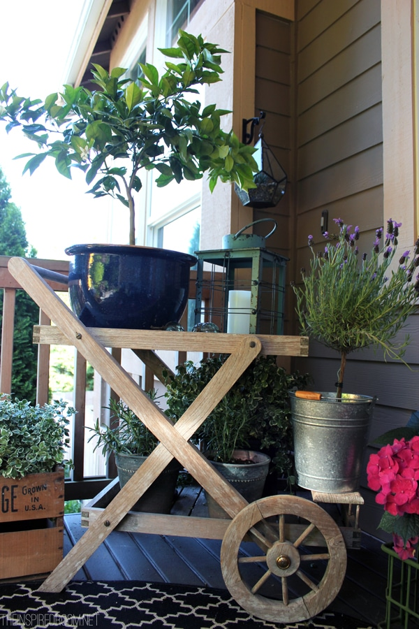 Spring Front Porch Gardening