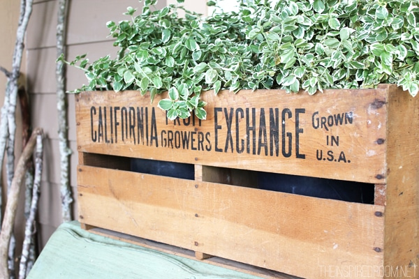 Wooden Fruit Crate as Planter - Front Porch Decorating