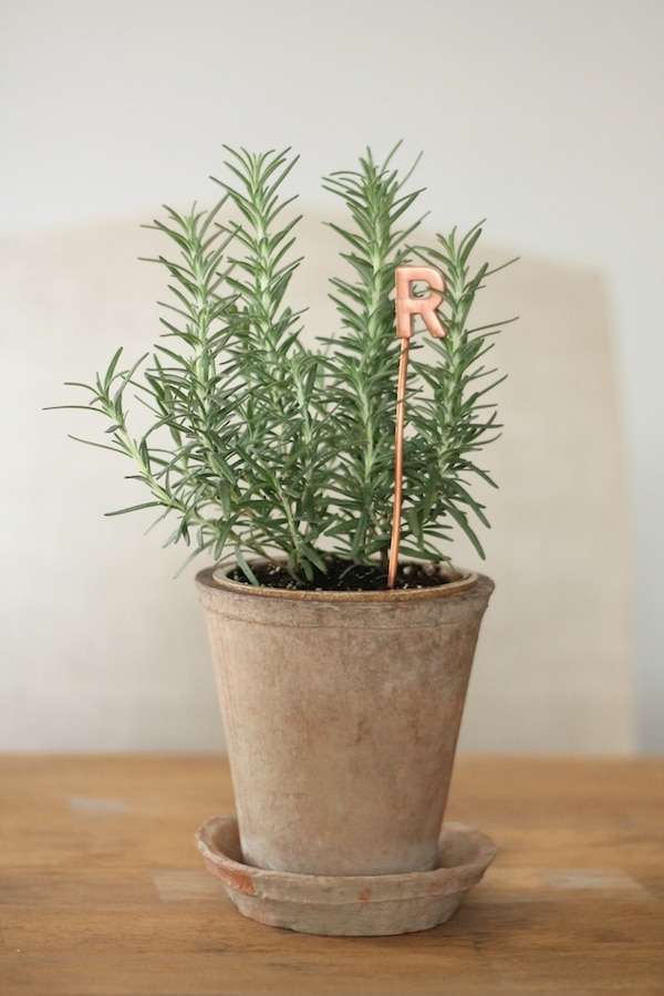 DIY Copper Garden Markers- Plant Labels - Coordinately Yours Julie Blanner