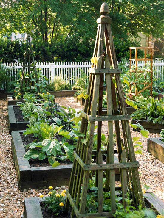 Trellises in Raised Garden Beds