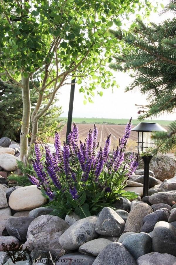 How to Create a Magical Garden