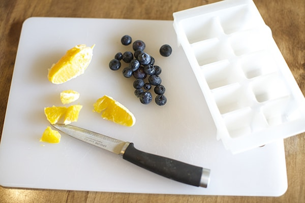 Fruit Ice Cubes - Orange Blueberry