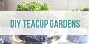 diy teacup gardens tir
