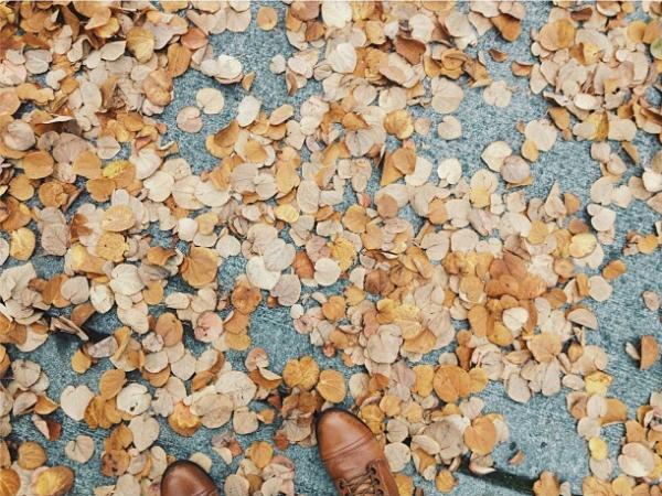 Favorite Fall Nesting Rituals: Puttering