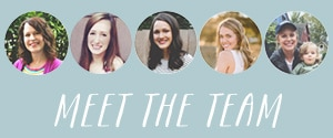 Meet the TIR Team - banner sidebar