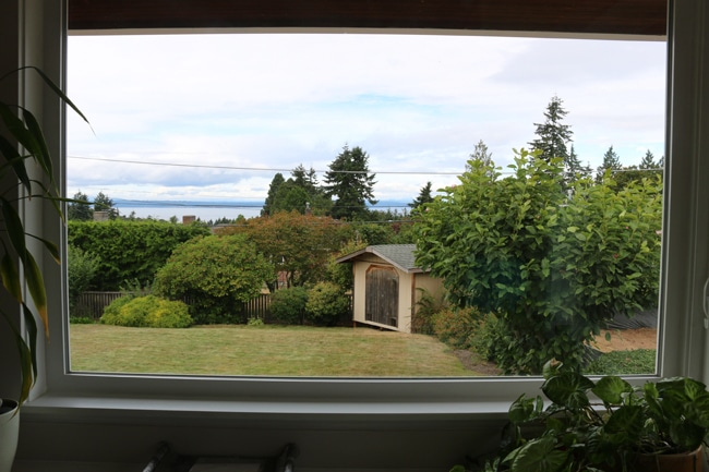 Kitchen View - Puget Sound