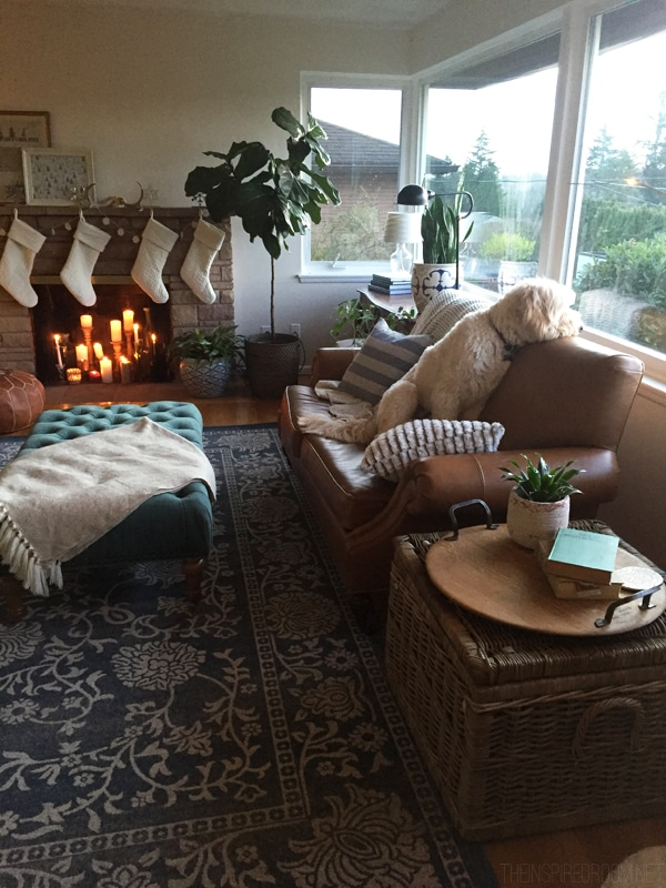 Jack the Goldendoodle - The Inspired Room Family Room