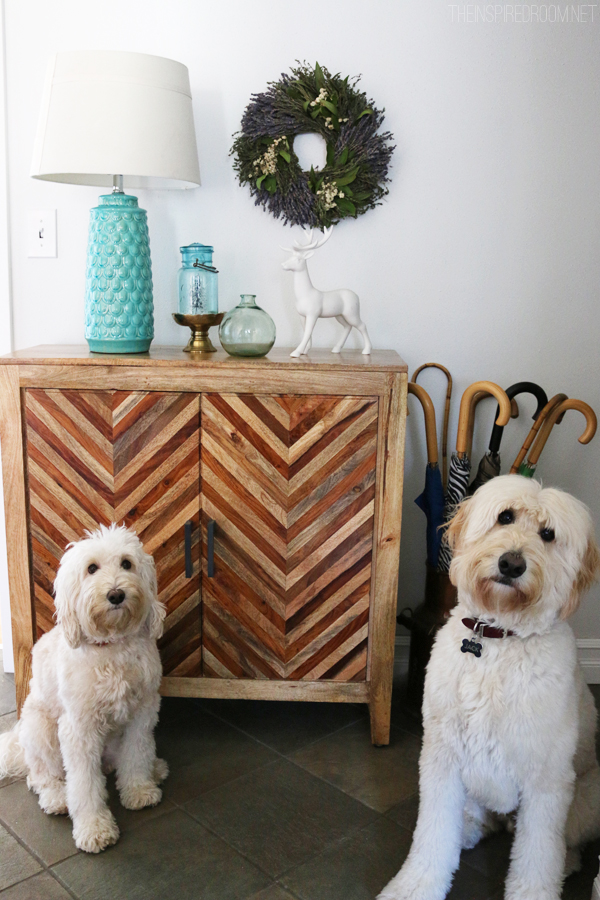 Jack the Goldendoodle and Lily the Labradoodle - The Inspired Room