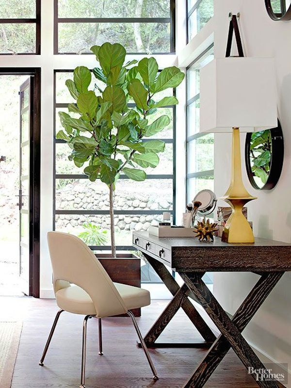 Inspired By Greenery Plants In Decor The Inspired Room