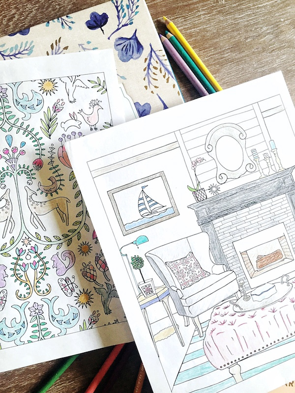 The Inspired Room Adult Coloring Book for House and Home Lovers