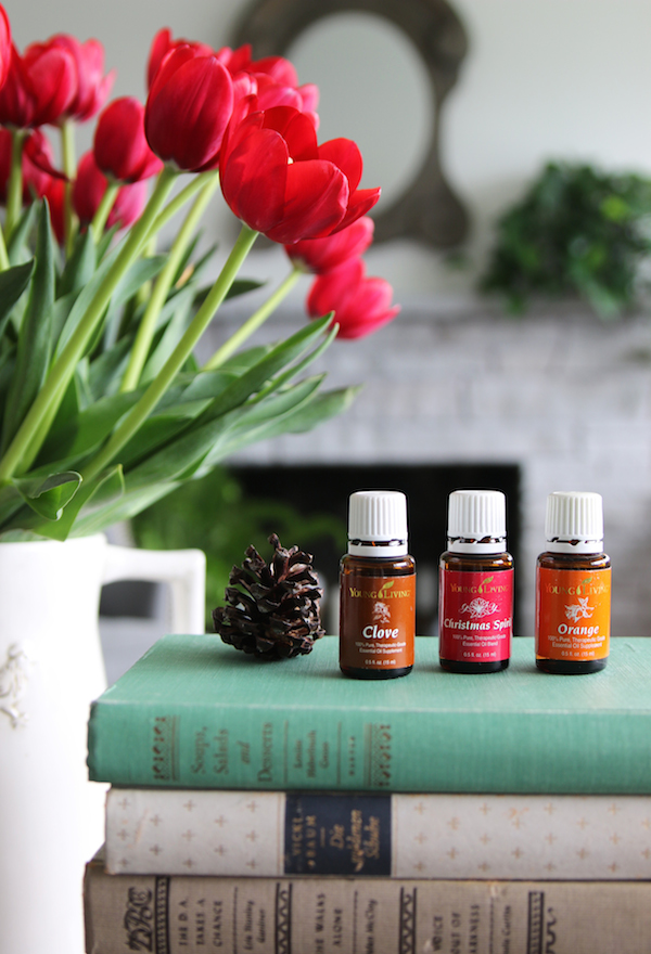 Cozy Fall Nesting - Essential Oil Fall Home Scent