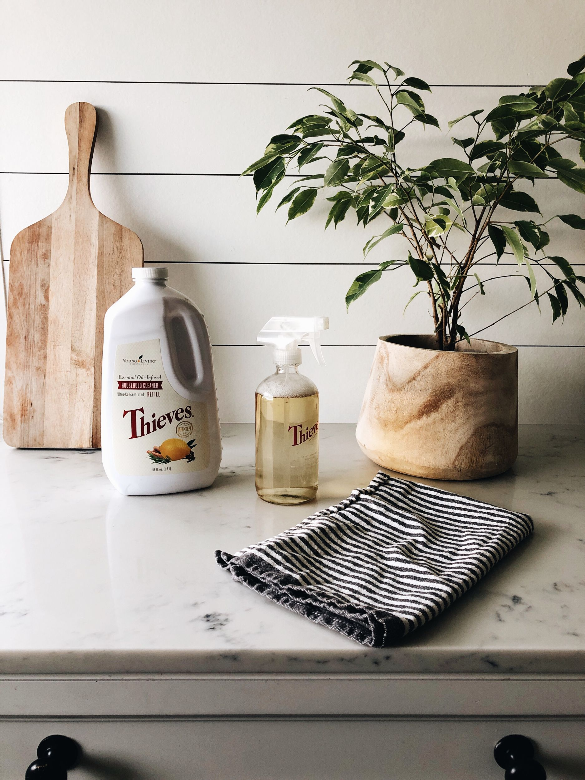 Favorite Plant-Based Products for Cleaning and Wellness
