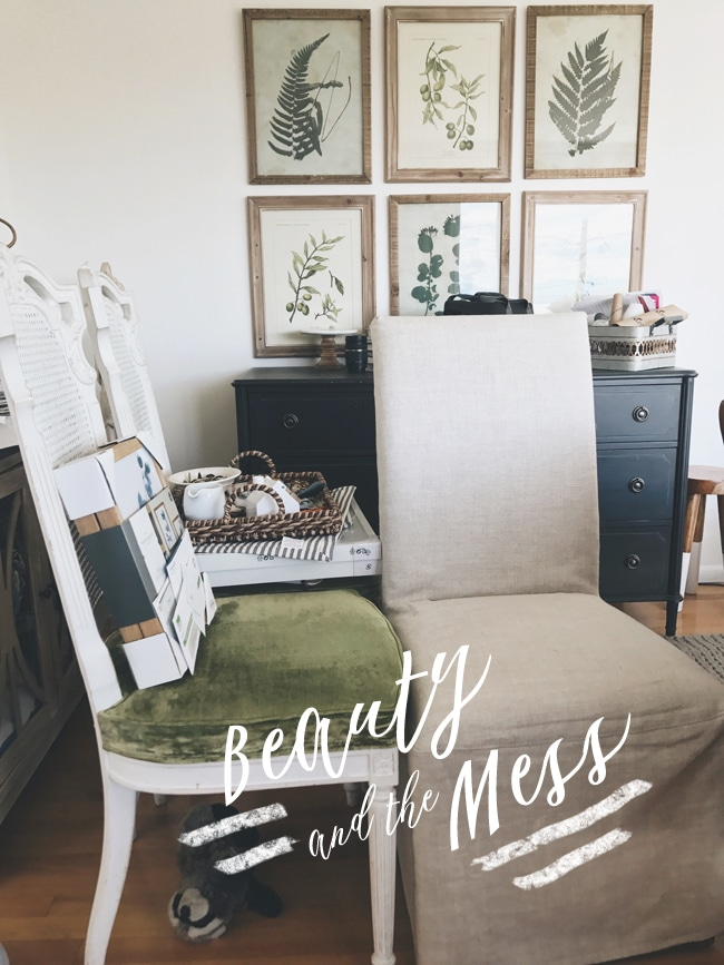 Beauty & The Mess
