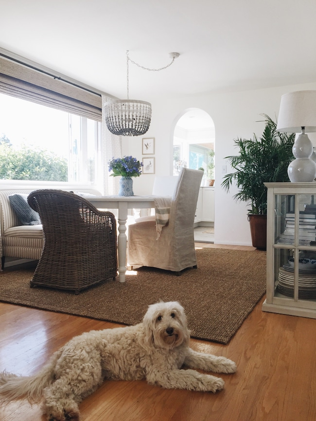 Summer Decorating: Finding Joy in Simplicity