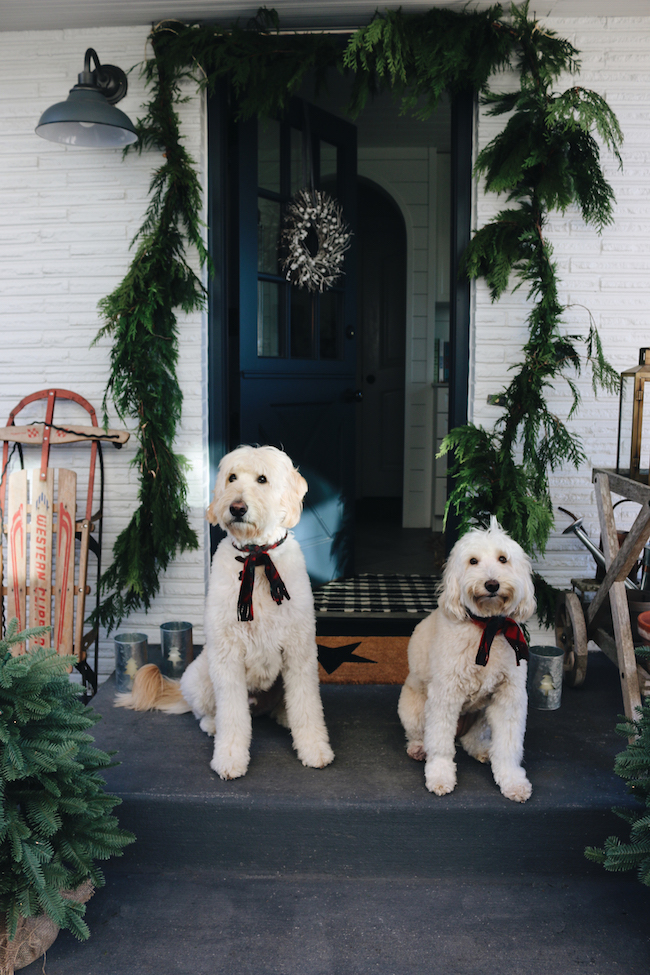 christmas house tour 2017 - Goldendoodle Christmas Decorations