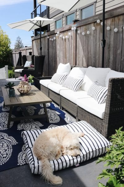 outdoor cushions and rugs