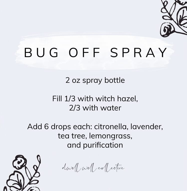 Natural Insect Repellent and DIY Bug Off Spray