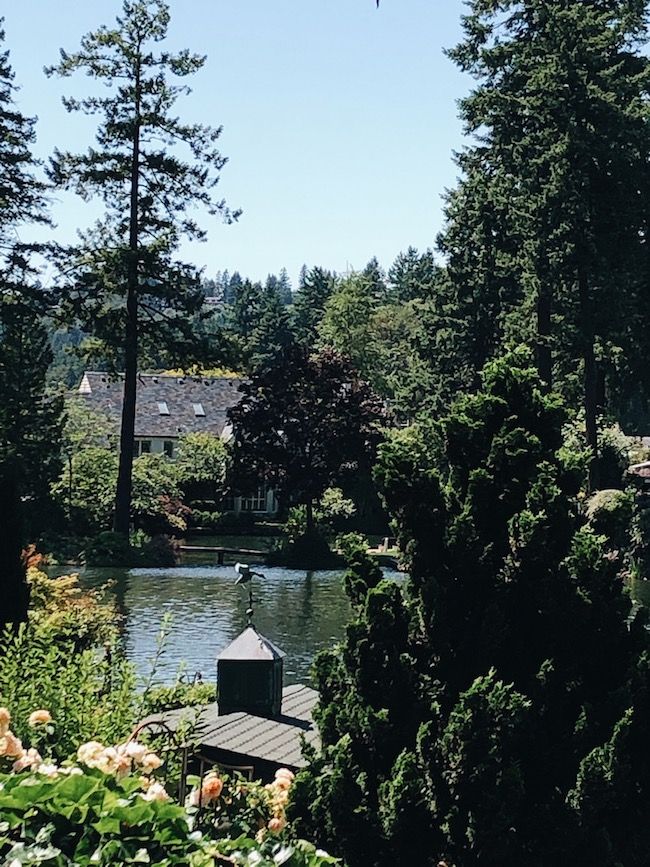 Drive By: Lake Oswego