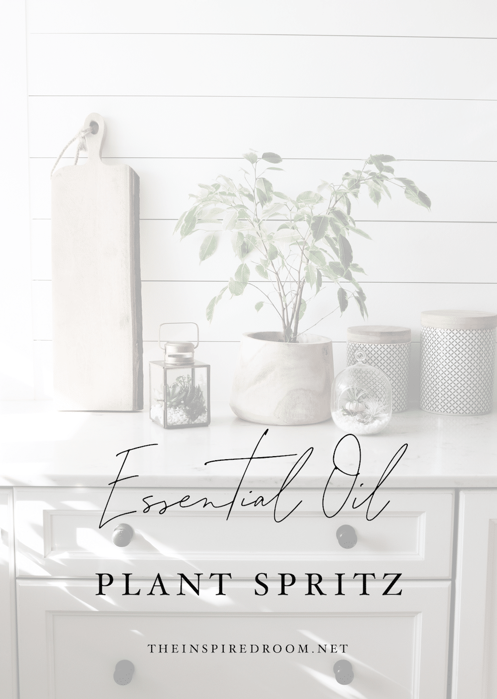 Happy Plant Spray for Your Home + Garden