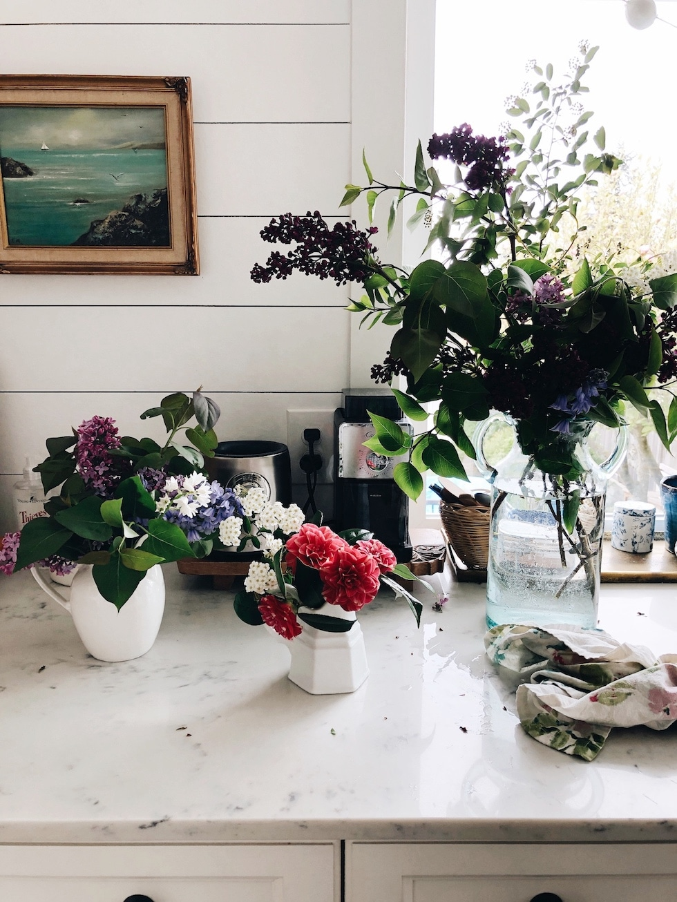 Flower Foraging + New Gardening Book
