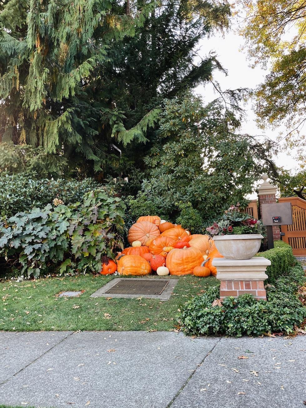 Beautiful Homes in Magnolia Neighborhood Seattle