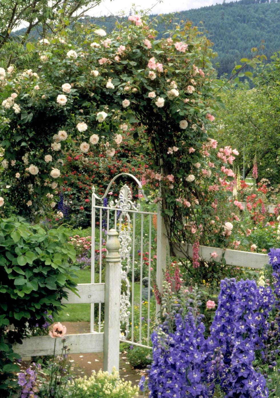 Garden Inspiration: Arbors, Trellises & Gates